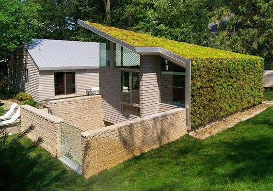 couverture toiture végétalisée